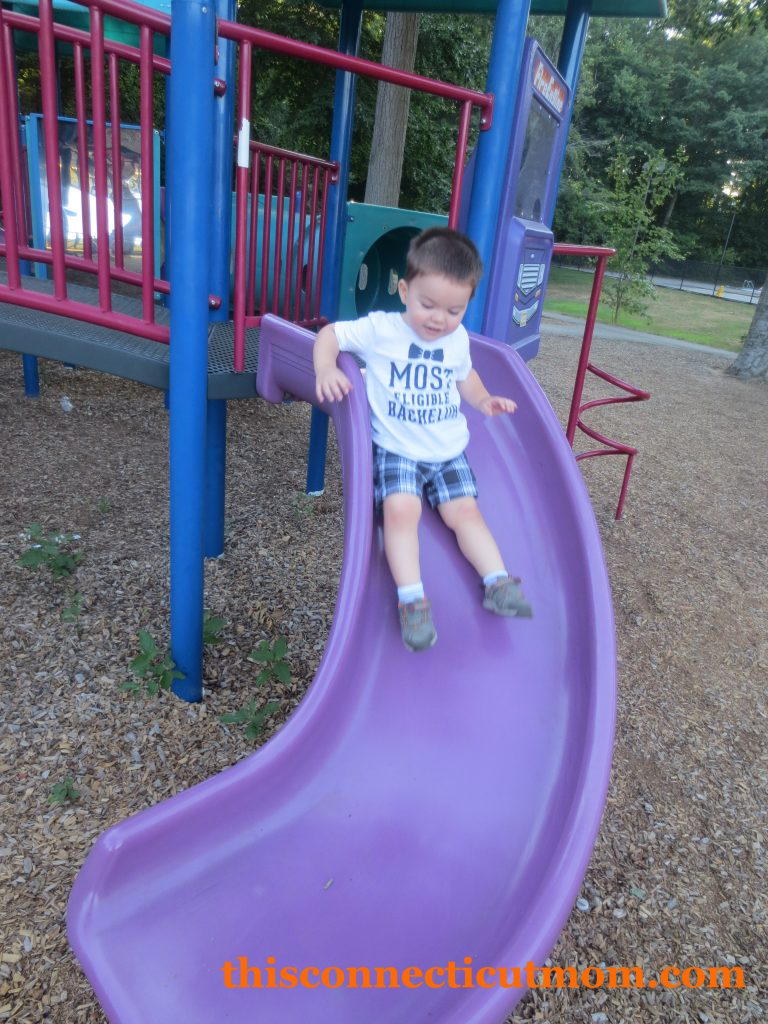Mollys Playground -Small Playscape Slide