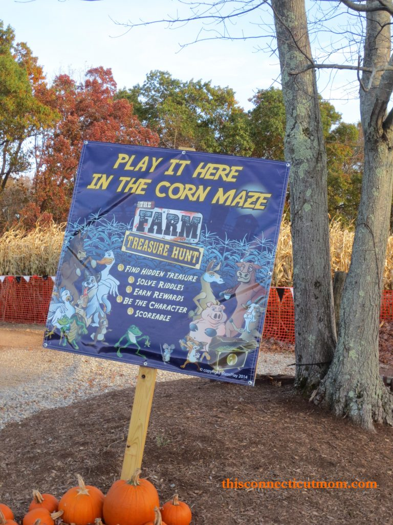 Meadowview- corn maze