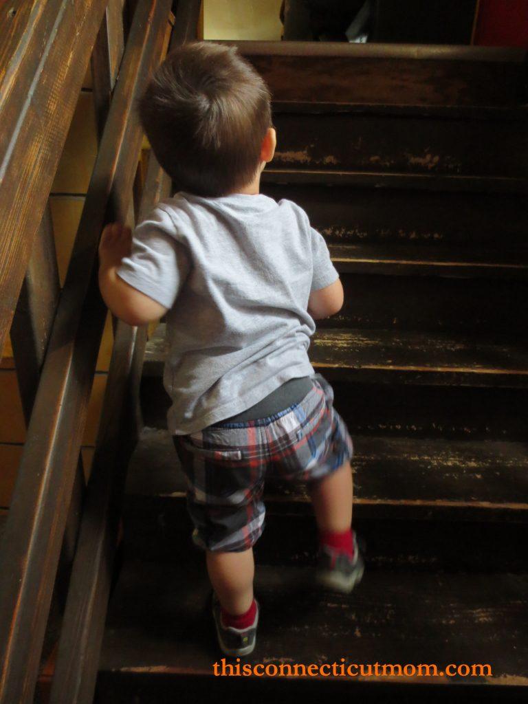 Lutz- Upstairs